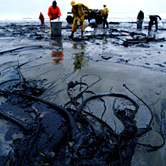 Tarballs invading our coastlines: Ghosts of oil spills past