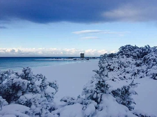 Snowmageddon: A lighthearted start to Marine Snow theme week