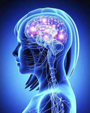 Attacking Alzheimer's: Medicinal marine microbes