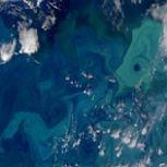 Antarctic Eddies Suck Carbon from the Atmosphere
