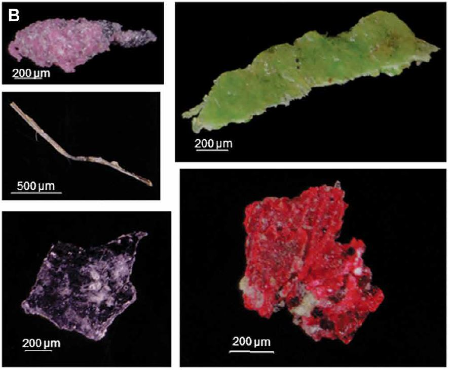 Traces of human plastic pollution in ocean sediment