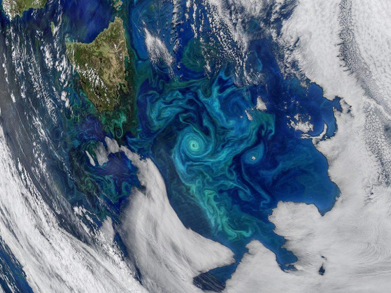 How important is carbon export by ocean eddies?