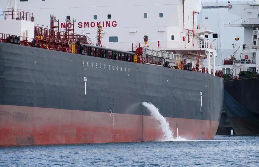Hidden diversity in ships' ballast tanks