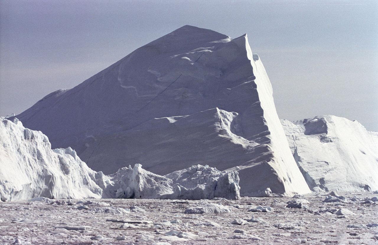 Icebergs Fertilize Phytoplankton Growth