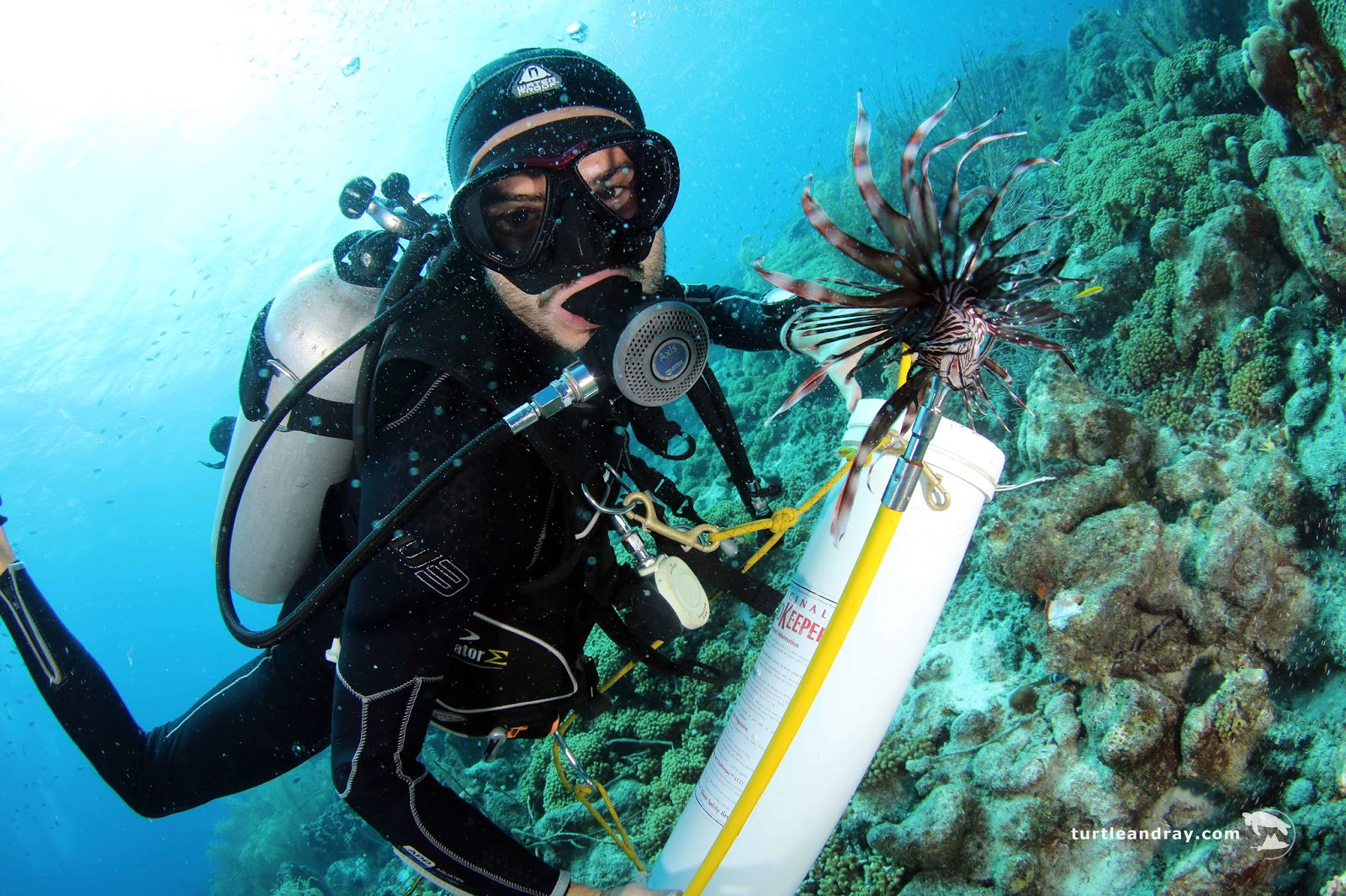 Lionfish, Counting, and Errors, Oh My: Challenges in Measuring Biomass of an Invasive Nuisance