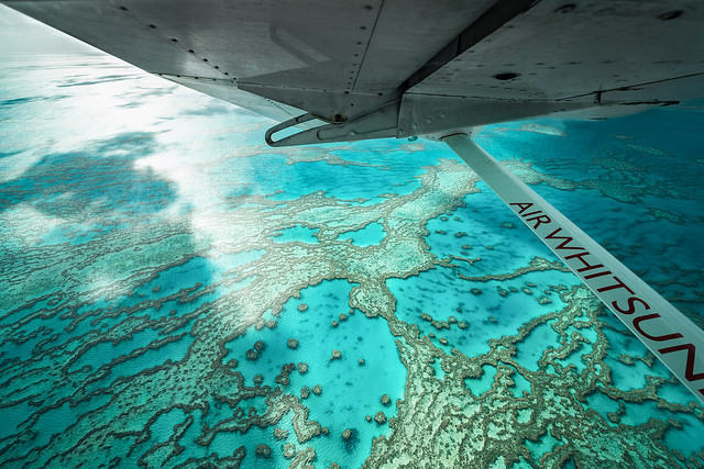 Climate-driven events leave an imprint on corals in the Great Barrier Reef