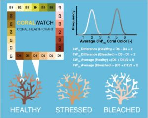 CoralWatch Coral Health Chart used by surveyors created by NOAA.