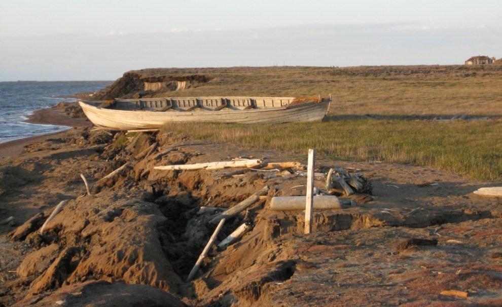 SURFO SPECIAL: A virtual adventure in coastal restoration