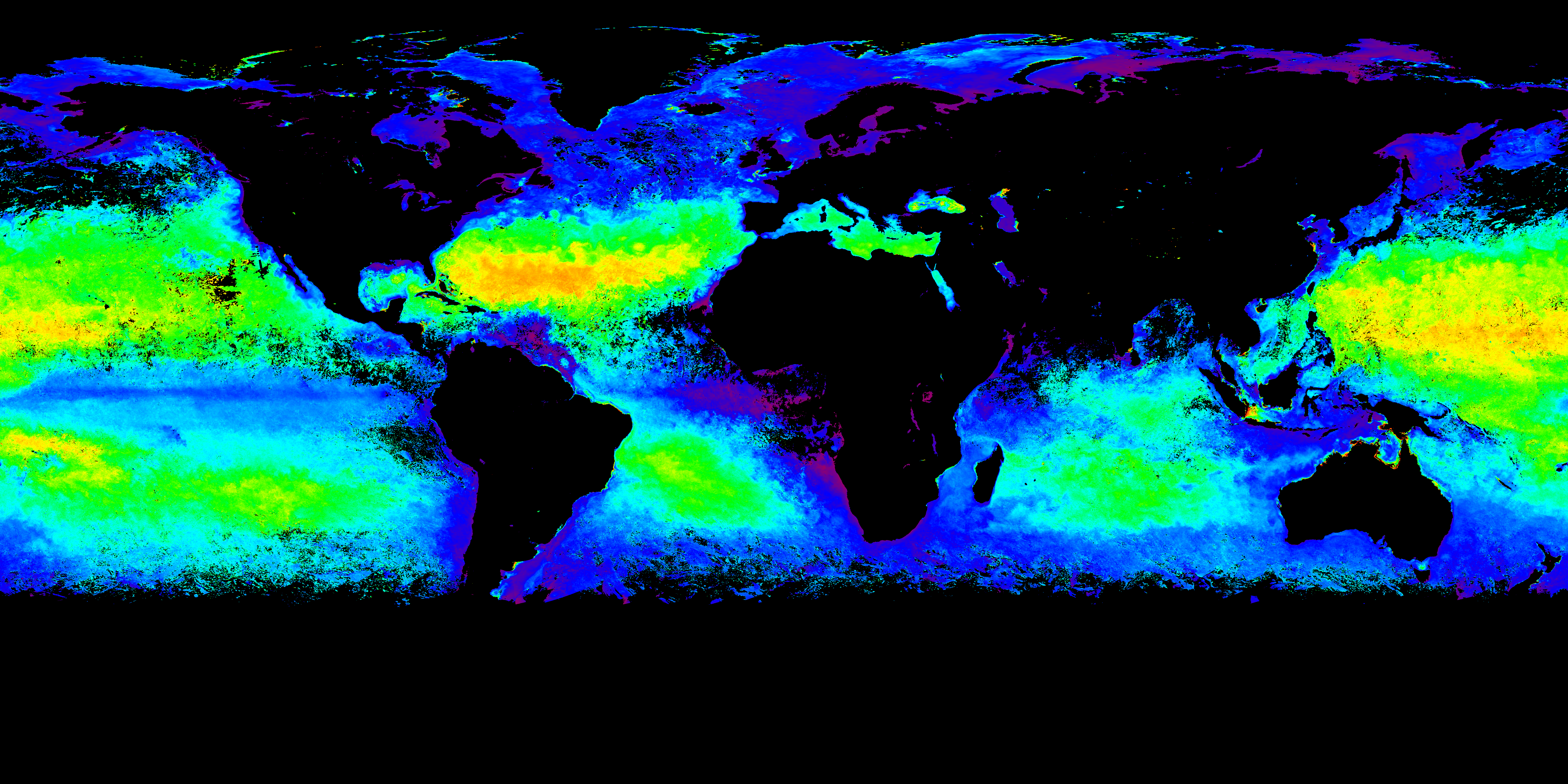 SURFO Special: From outer space to the microscope: How NASA's satellites are helping us understand the ocean's smallest life