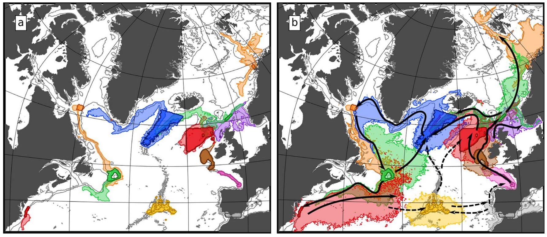 Upward and onward: how deep-sea larvae utilize vertical swimming to disperse across ocean basins