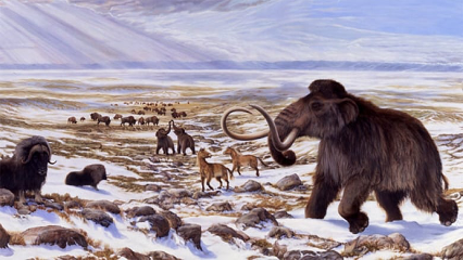 How cold did the ice age really get?