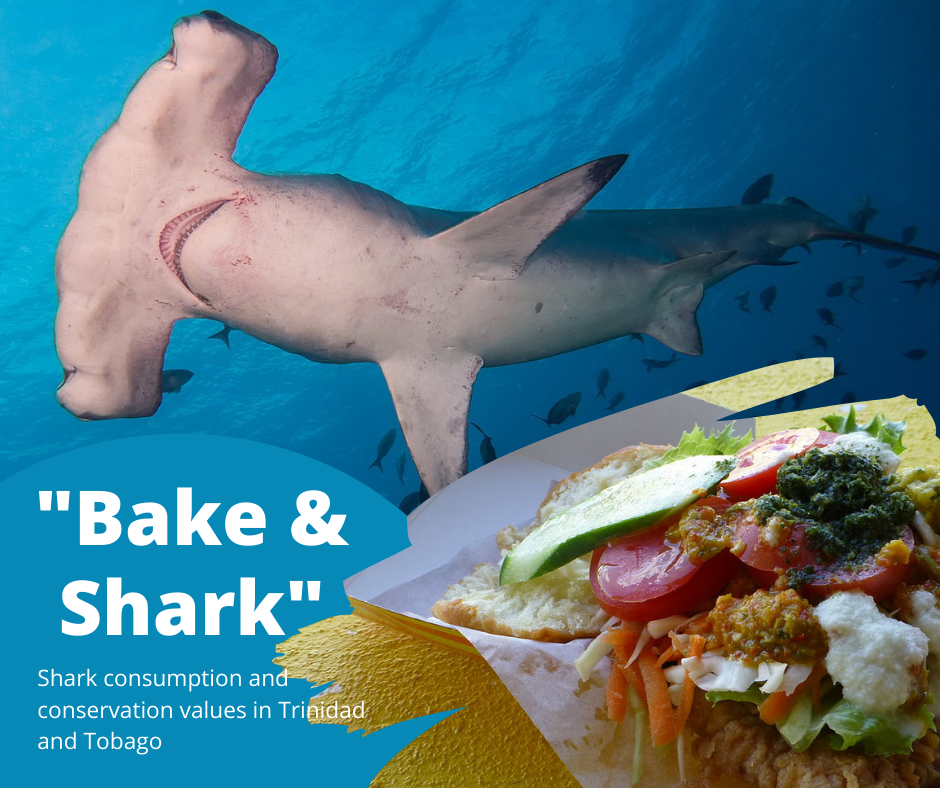 """""""Bake and Shark"""" – Asking Trinidadians and Tobagonians How They Feel About This Traditional Beach-Side Snack"""
