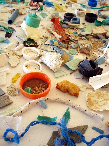 A variety of plastic debris that can be found in the ocean. Some of the pollution items shown are bottle caps, rope, and broken down plastic pieces.