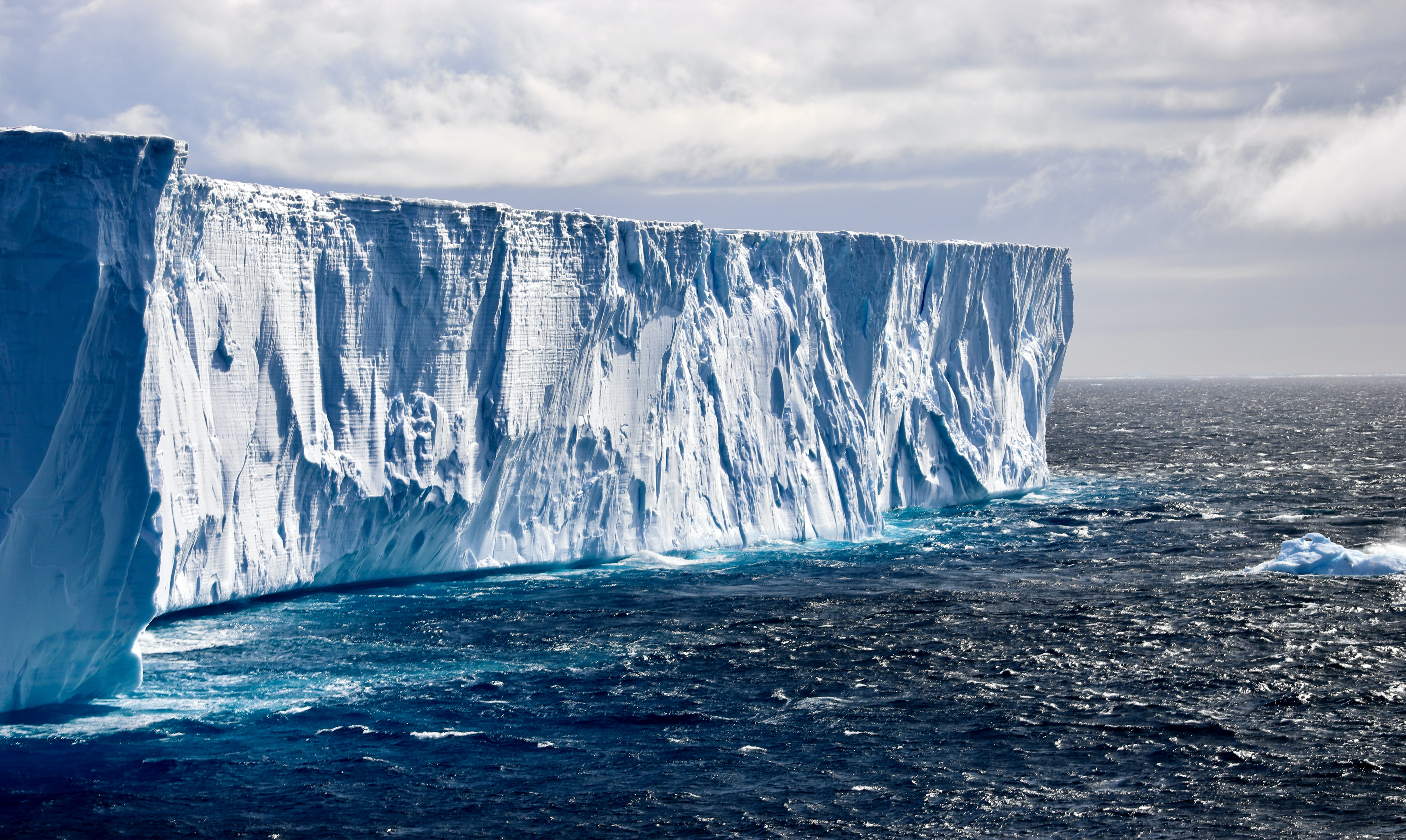 Antarctic Sea Ice Feeds Microbes with a Surprising Ability