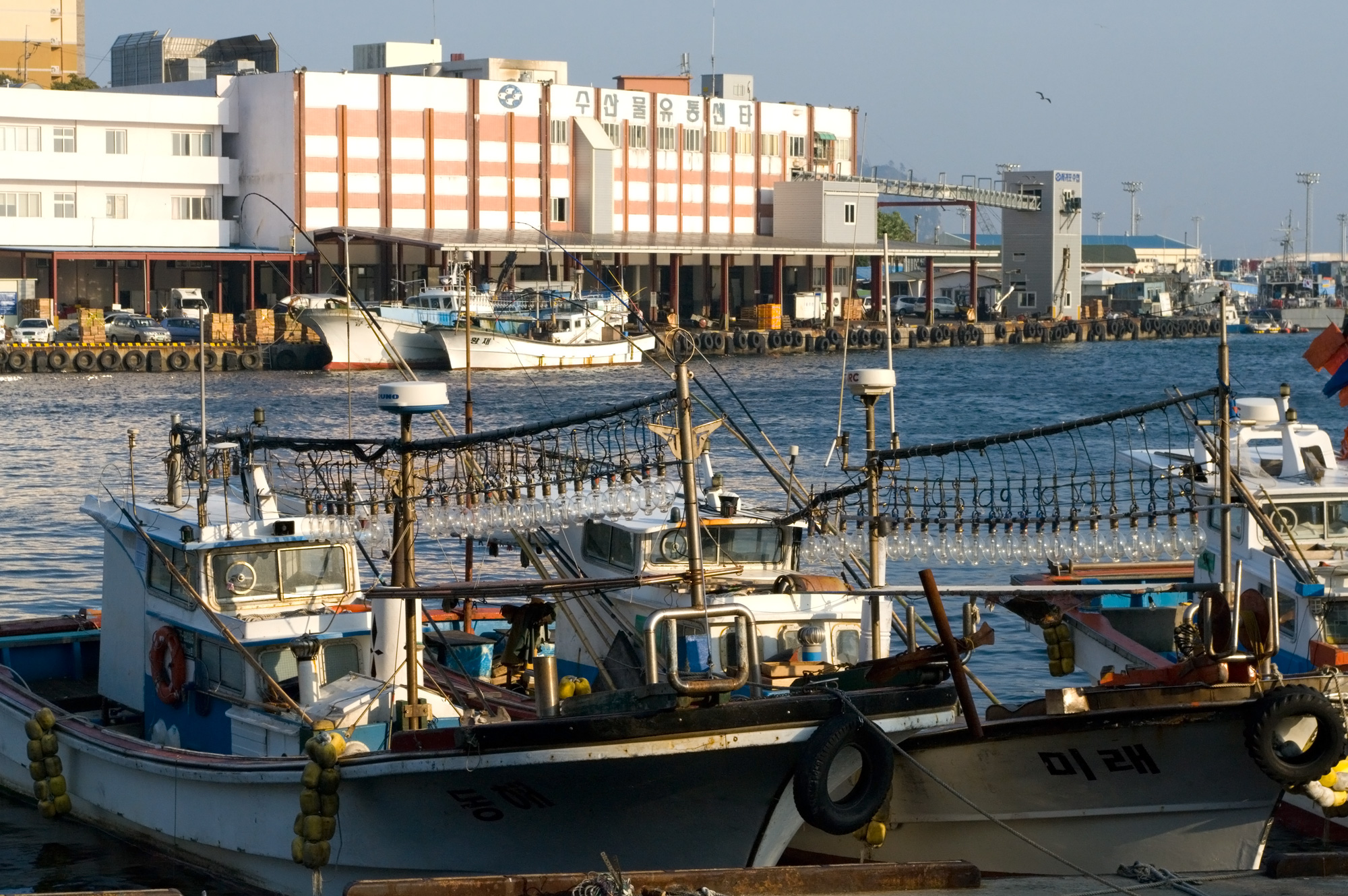 Image of squid jigger boat in Seogwipo City in Jeju. Medium sized vessel is docked with two long lines of electric lamps on deck, these electric lamps are used to attract squid at night. This vessel is similar to the squid jiggers used in the study.