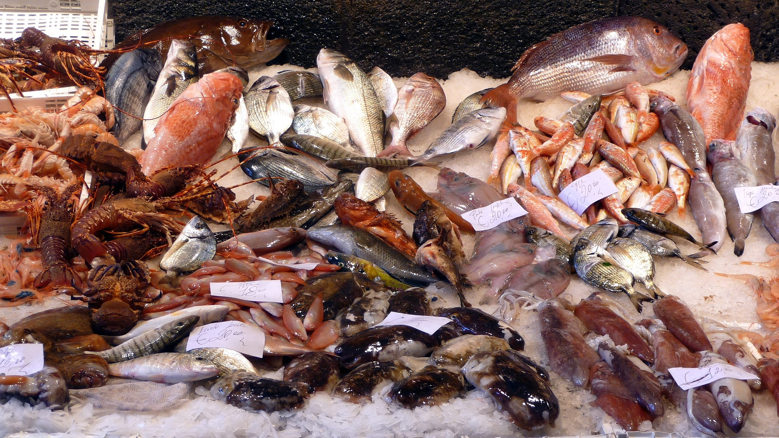 Seafood Fraud: Is that Fish Really a Fish?
