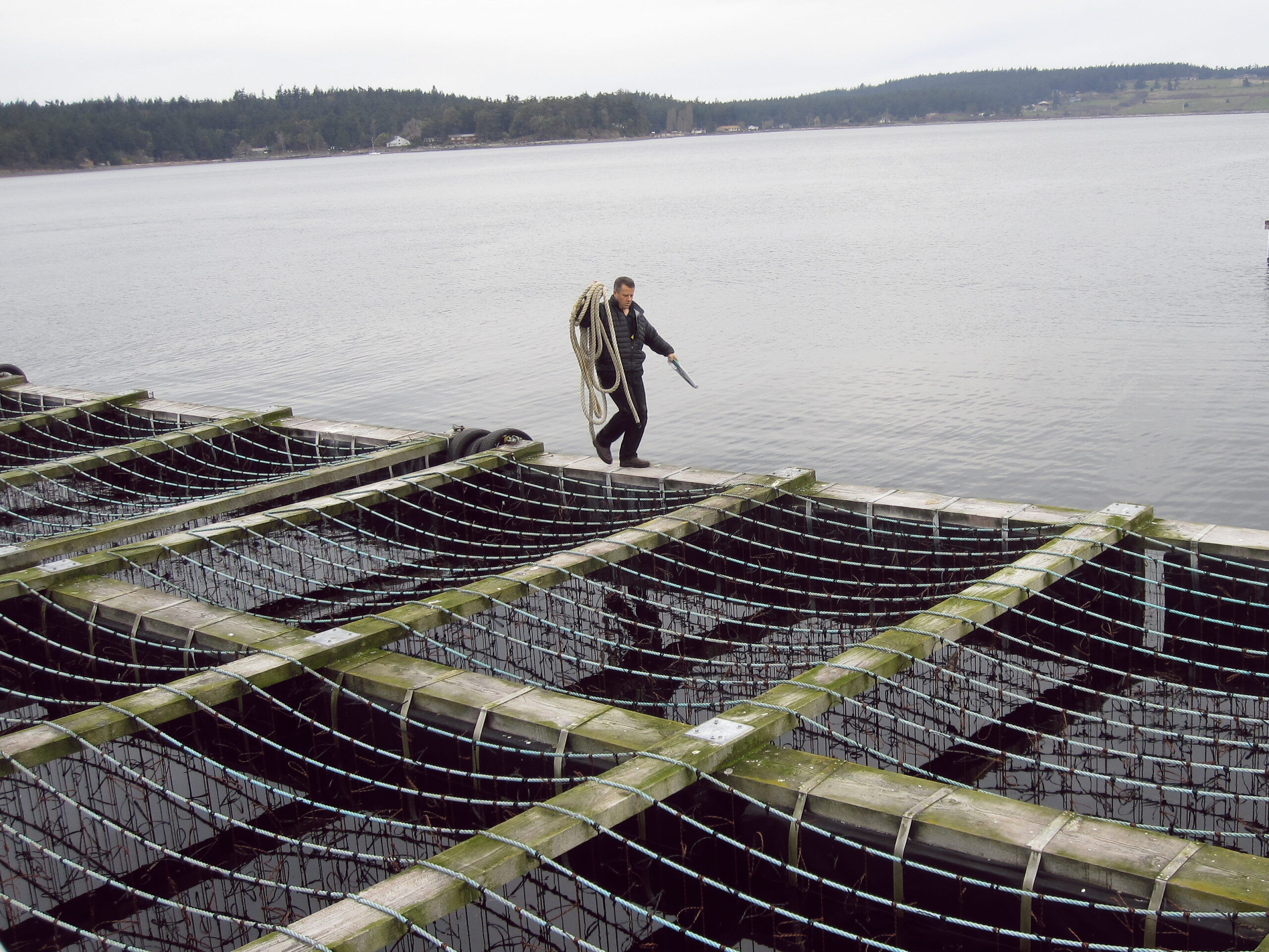 Sea-farming our way to a better future