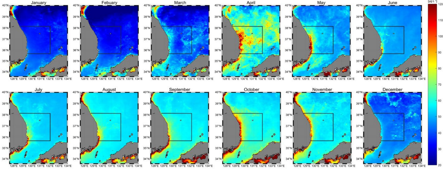 A View from Above: Determining Protein Concentration in Phytoplankton by Satellites
