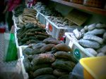 Sea cucumbers in a fish market