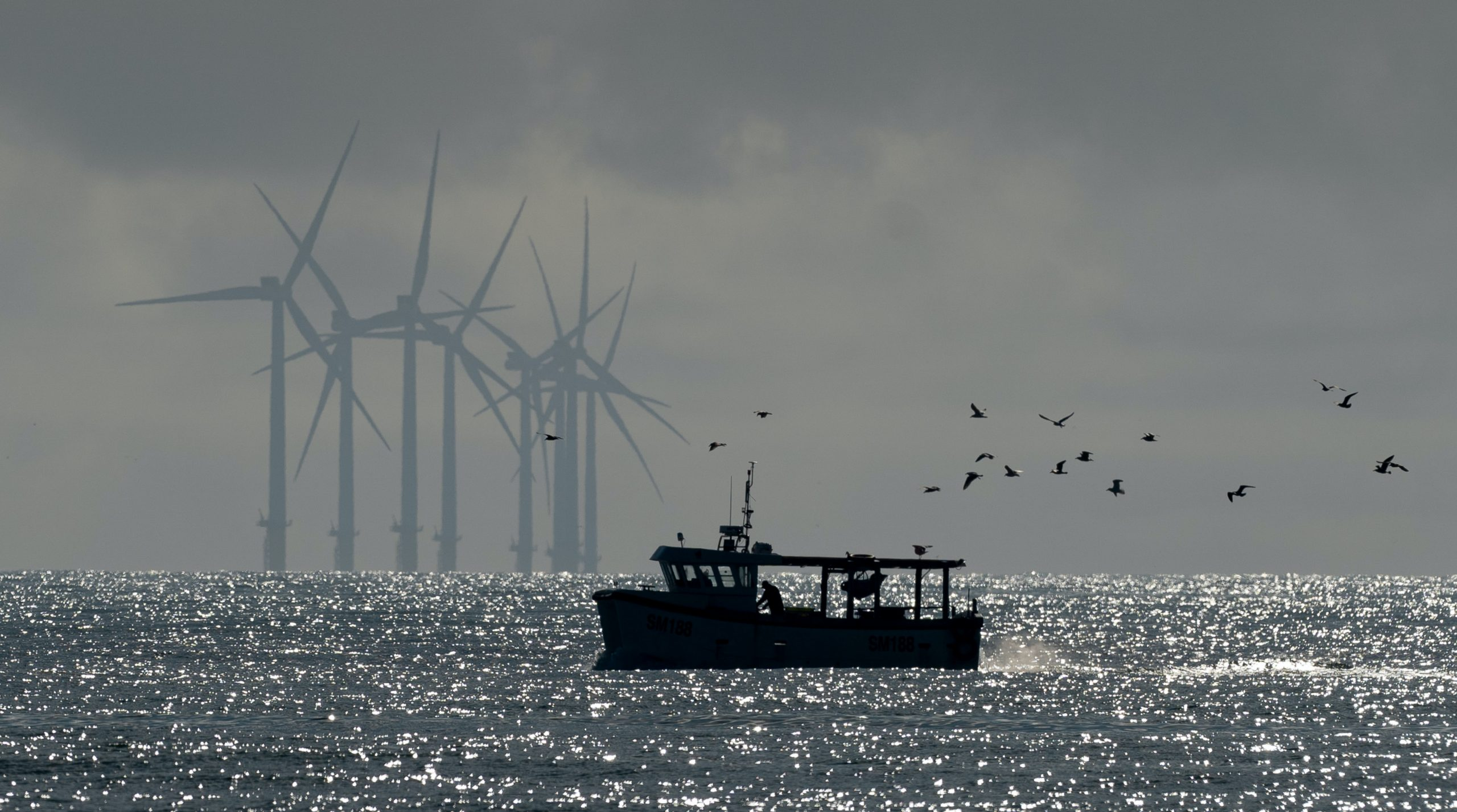 Recreational Fishers Cast an Eye Towards Offshore Wind