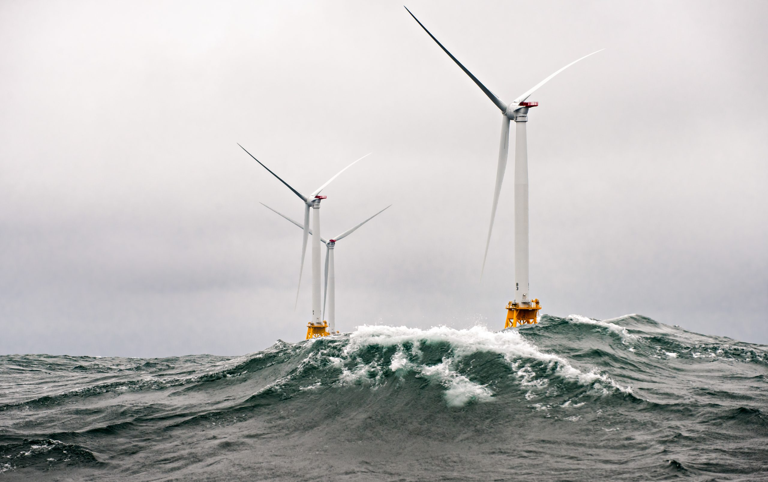 Fishing or Farming: Can Fisheries and Offshore Wind Farms Coexist?