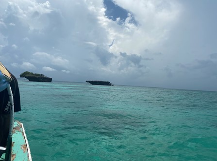 Image looking out at cloudy sky with green clear water below, taken from the deck of a boat near Chumbe Island Coral Park.