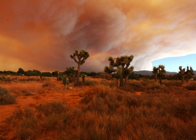 How Extreme Wildfires Made the COVID Pandemic Deadlier