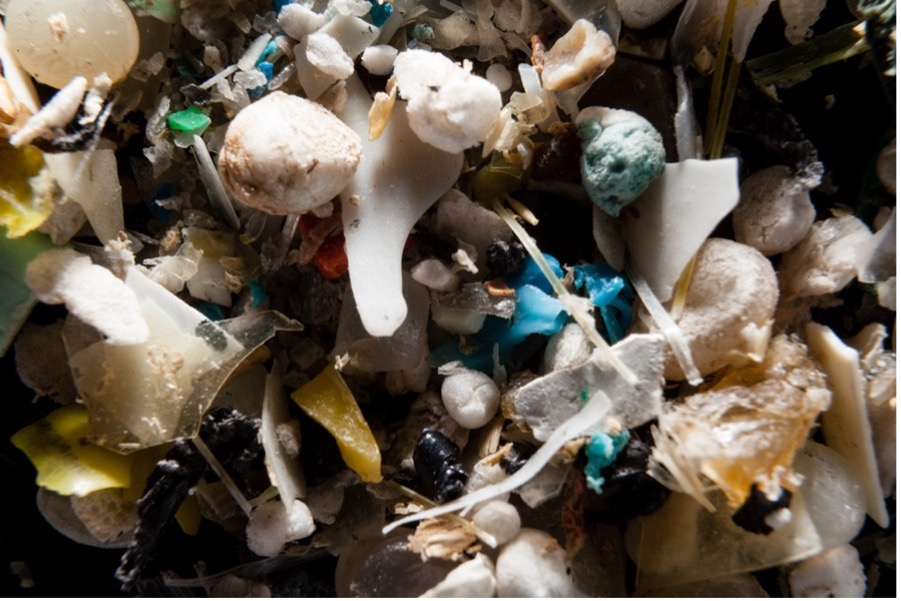 Far reaching microplastics: They may be closer than you think