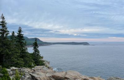 Is coastline seaweed in danger?