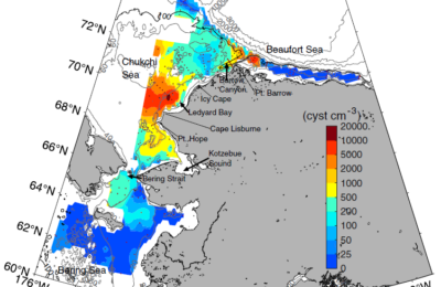 Another Impact of Climate Change: Toxic Algal Blooms in the Arctic